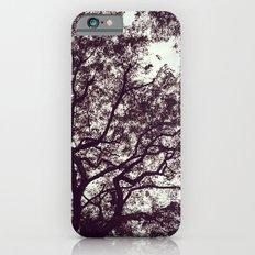 stiffs Slim Case iPhone 6s