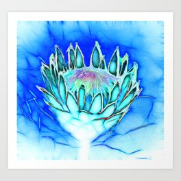 Telopea in blue Art Print