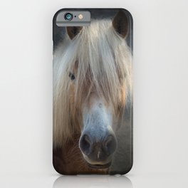 Friendly looking Horse iPhone Case