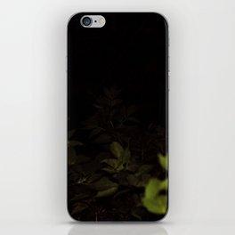 2017-09-22 iPhone Skin
