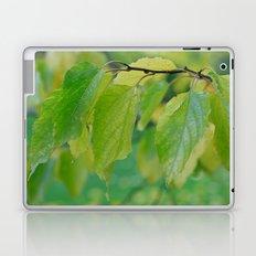 Natures Way Laptop & iPad Skin