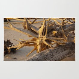 Driftwood Roots in Color Rug