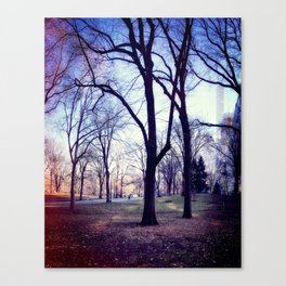 Wake Up In Your Dream World Canvas Print