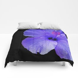 A Single Hibiscus Inversion Comforters
