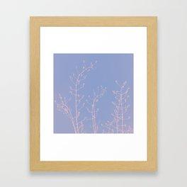 Serenity of Rose Jasmine Framed Art Print