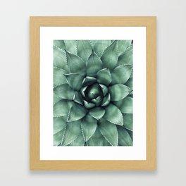 Macro Succulent Framed Art Print