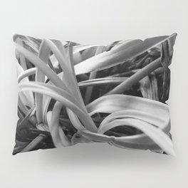 CLOSE UP Pillow Sham