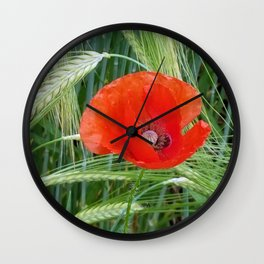 The Red Poppy in the Field Wall Clock