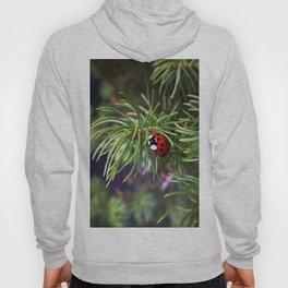The Ladybird Hoody