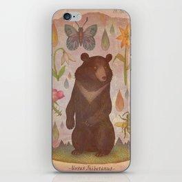 Asian Black Bear iPhone Skin
