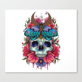 Neo Traditional Patterned Moth and Skull Canvas Print