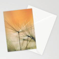Apricot Chutes Stationery Cards