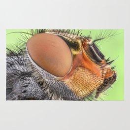 Insect III Rug