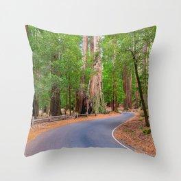 redwoods, redwood, landscape, landscapes, Sequoia, Sempervirens, California, Big Basin, Big Basin Redwoods, Santa Cruz County, Glenn Franco Simmons, redwood landscape, redwood photos, Throw Pillow