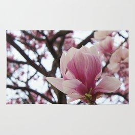 sunday morning magnolia Rug