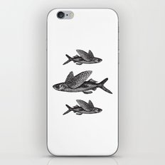 Flying Fish | Black and White iPhone & iPod Skin