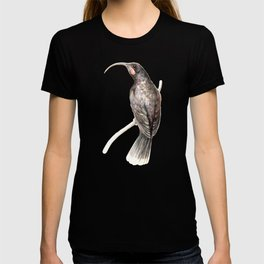 Huia - a native New Zealand bird 2011 T-shirt