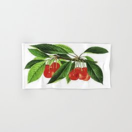 Red Cherries Vector on White Background Hand & Bath Towel
