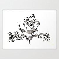 jasmine Art Prints featuring Jasmine by Nadia Heart
