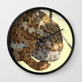 Chameleon Hanging On A Wire Fence Wall Clock