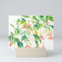 Brugmansia Delicate Floral Watercolor Trumpet Flower Painting Mini Art Print
