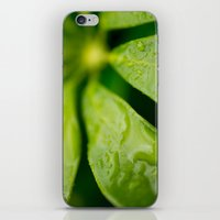 jamaica iPhone & iPod Skins featuring Jamaica Greenery by Heartland Photography By SJW