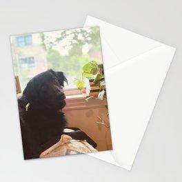 Thoughtful window dog Stationery Cards
