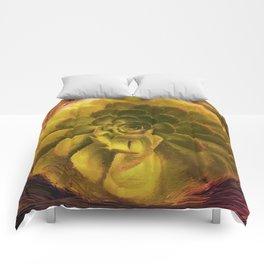 Dusucculent Comforters