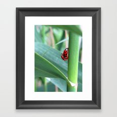 Happiness in a double Framed Art Print