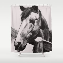 Horse Greeting A Stranger Shower Curtain