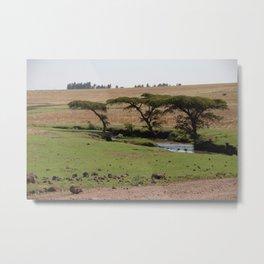 Omo Valley Acacia Trees Landscape Ethiopia Africa Metal Print