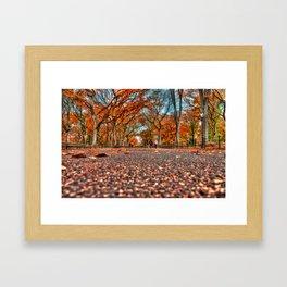 Otoño Framed Art Print