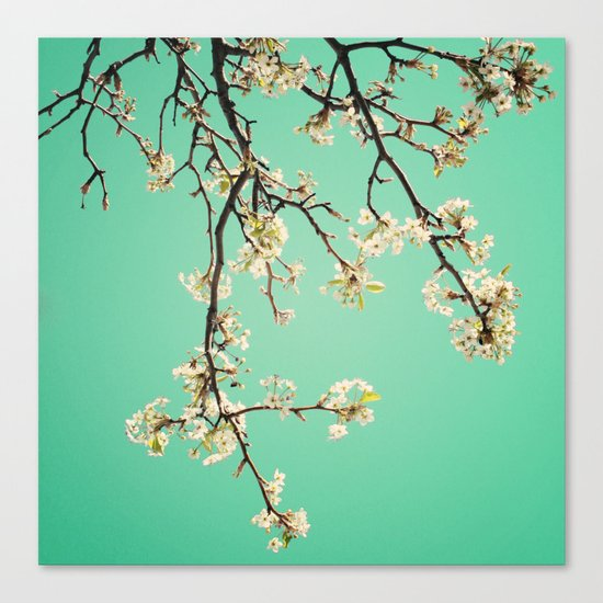 Beautiful inspiration! Canvas Print
