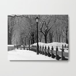 Central Park in Winter, Black & White Metal Print