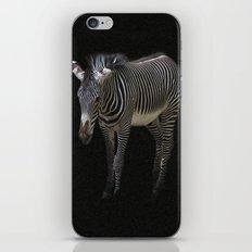 Black and White on Black iPhone & iPod Skin