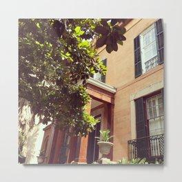 Sorrel Weed House Metal Print