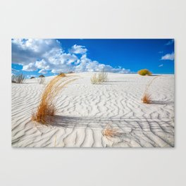 Playground - Vibrant Plant Life and Sandy Textures at White Sands New Mexico Canvas Print