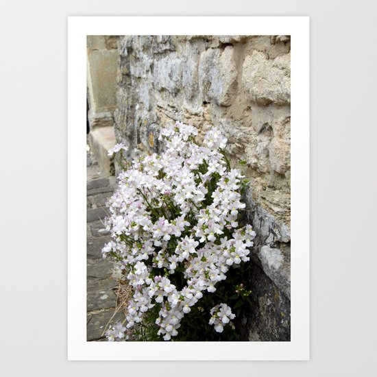 English Garden - Flowers from Stone Art Print