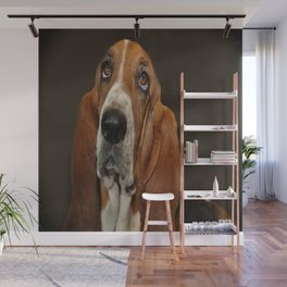 Lost In Thought Basset Hound Dog Wall Mural