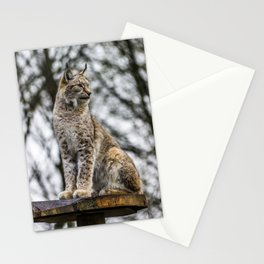 Standing Proud. Stationery Cards