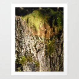 Fairy Castle Art Print