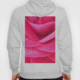 Dew on pink rose petals macro Hoody