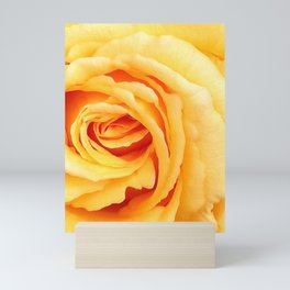 Yellow Rose - Floral Photography by Fluid Nature Mini Art Print