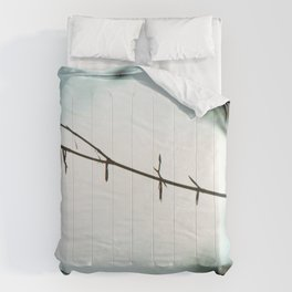 Fragile in the cold Comforters