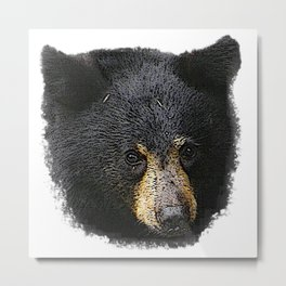 Black bear baby, bear, animals Metal Print