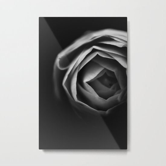 Pfingstrose Metal Print