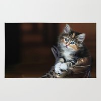 kitten Area & Throw Rugs featuring Kitten by Julie Hoddinott