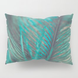 Turquoise Feather Close Up Pillow Sham