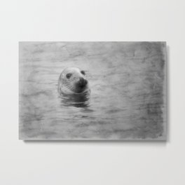 seal with texture Metal Print