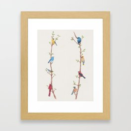 Bird Branches Framed Art Print